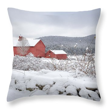 Winter In Connecticut Throw Pillow by Bill Wakeley