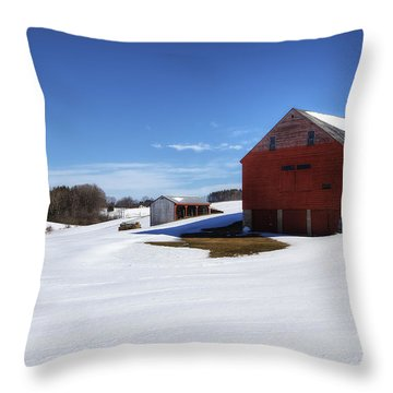 Winter In Dover Throw Pillow by Eric Gendron