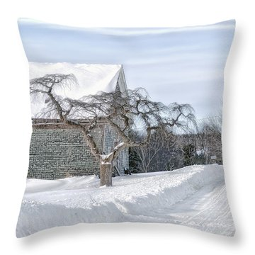 Winter Is Our Guest Throw Pillow by Richard Bean
