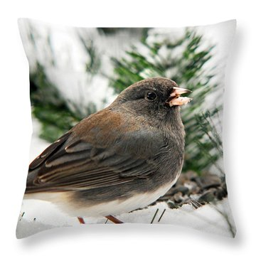 Winter Junco Throw Pillow by Christina Rollo