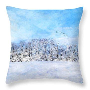 Winter Landscape Throw Pillow by Darren Fisher