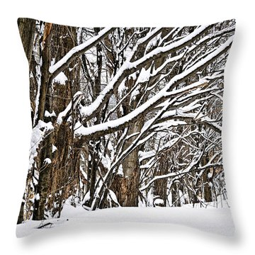 Winter Landscape Throw Pillow by Elena Elisseeva