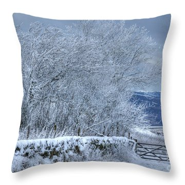 Winter Landscape Near Buxton Throw Pillow by David Birchall