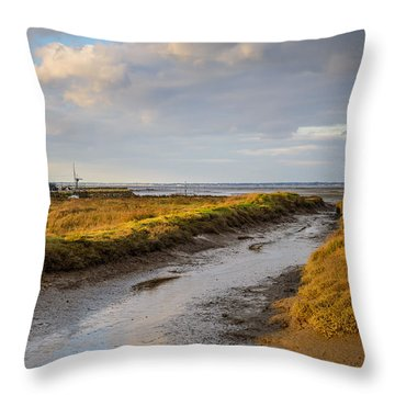 Throw Pillow featuring the photograph Winter Lights by Thierry Bouriat