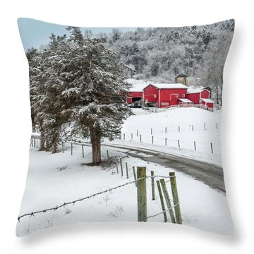Winter Road Square Throw Pillow by Bill Wakeley
