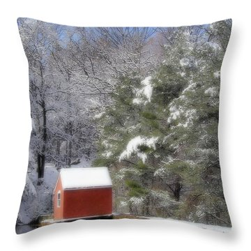 Winter Scene  Throw Pillow by Karol Livote