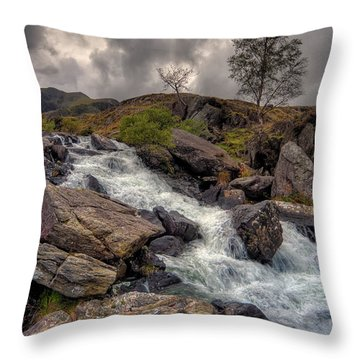 Winter Stream Throw Pillow by Adrian Evans