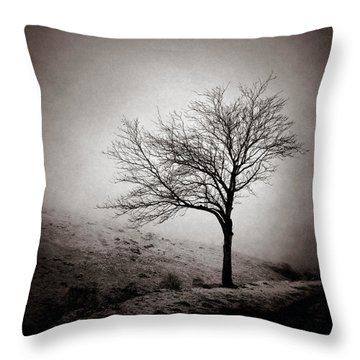 Winter Tree Throw Pillow by Dave Bowman