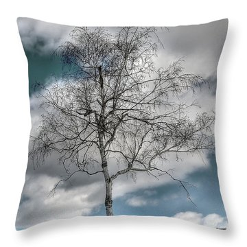 Winter Tree Throw Pillow by Todd Hostetter
