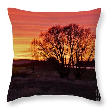 Winter Tree With Red Sky Throw Pillow by Valerie Garner