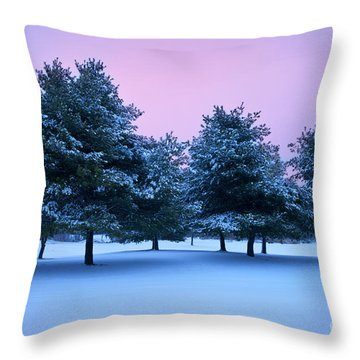 Winter Trees Throw Pillow by Brian Jannsen
