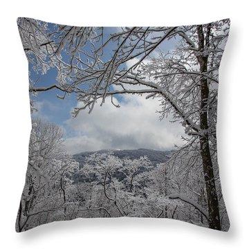 Winter Window Wonder Throw Pillow by John Haldane