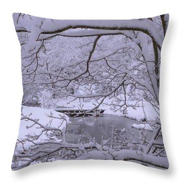 Winter Wonderland 2 Throw Pillow by Mike McGlothlen