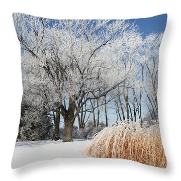 Winter Wonderland Throw Pillow by Robyn Saunders