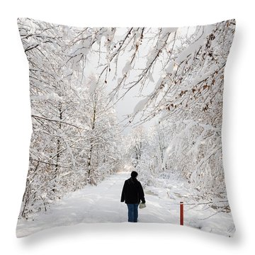 Winterly Forest With Snow Covered Trees Throw Pillow by Matthias Hauser