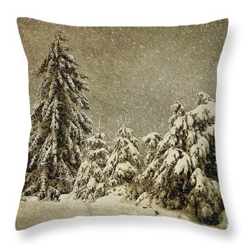 Winter's Wrath Throw Pillow by Lois Bryan