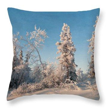 Wintery Throw Pillow by Priska Wettstein