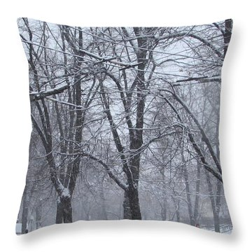 Wintry Throw Pillow by Anna Yurasovsky