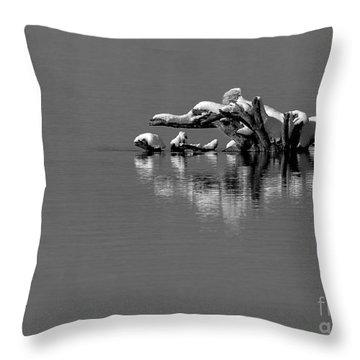 Wisconsin River Throw Pillow by Steven Ralser