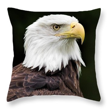 With Dignity Throw Pillow by Dale Kincaid