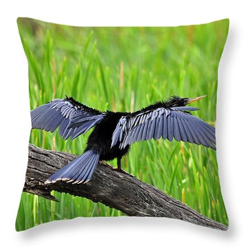 Wonderful Wings Throw Pillow by Al Powell Photography USA
