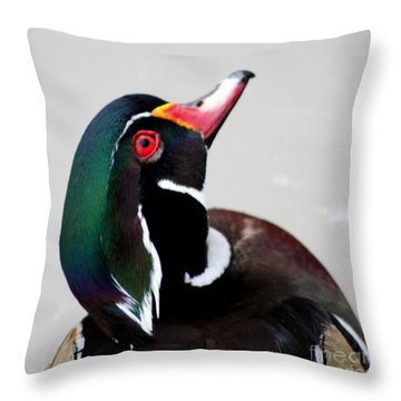 Wood Duck Drake Throw Pillow by Bob and Jan Shriner