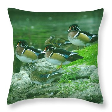 Wood Ducks Hanging Out Throw Pillow by Jeff Swan