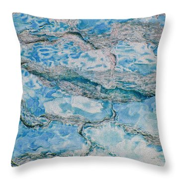 Wood To Water Throw Pillow by Stephanie Grant