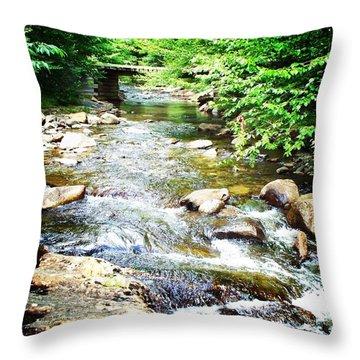 Wooden Bridge Throw Pillow by Joy Nichols