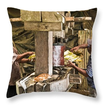 Working Hard For Sugar Throw Pillow by Heiko Koehrer-Wagner