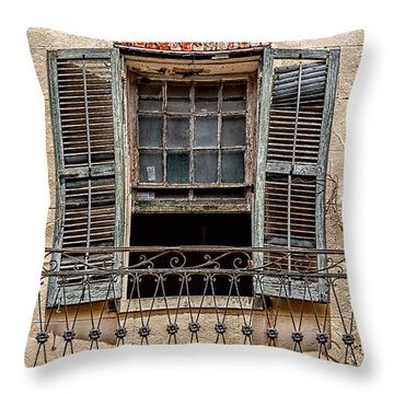 Worn Window Throw Pillow by Christopher Holmes