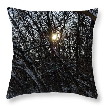 Yearning For Spring By Jammer Throw Pillow by First Star Art