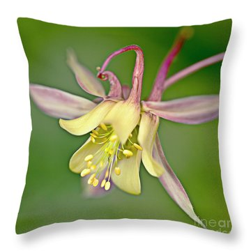 Yellow Aquilegia Bloom Throw Pillow by Heiko Koehrer-Wagner