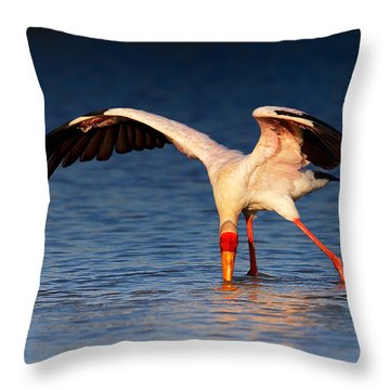 Yellow-billed Stork Hunting For Food Throw Pillow by Johan Swanepoel
