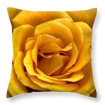 Yellow Close-up Throw Pillow by Robert Bales