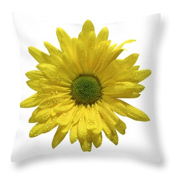 Yellow Daisy  Throw Pillow by Mauro Celotti