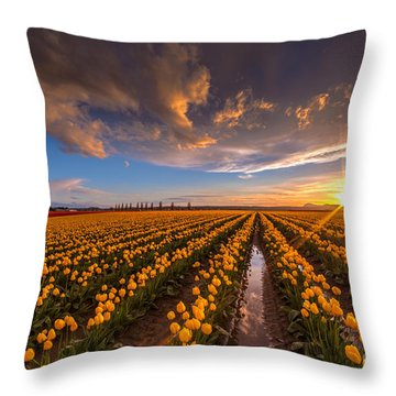 Yellow Fields And Sunset Skies Throw Pillow by Mike Reid