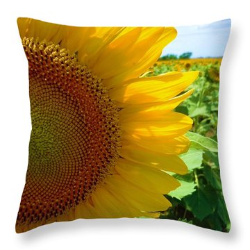 Yellow Glory #2 Throw Pillow by Robert ONeil