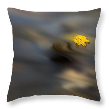 Yellow Leaf Floating In Water Throw Pillow by Dan Friend
