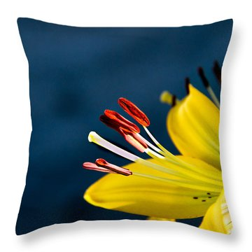 Yellow Lily Stamens Throw Pillow by Robert Bales