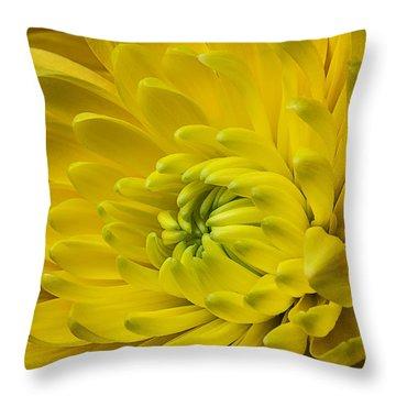 Yellow Mum Still Life Throw Pillow by Garry Gay