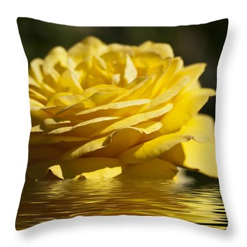 Yellow Rose Flood Throw Pillow by Steve Purnell