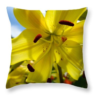 Yellow Whopper Lily 2 Throw Pillow by Jacqueline Athmann