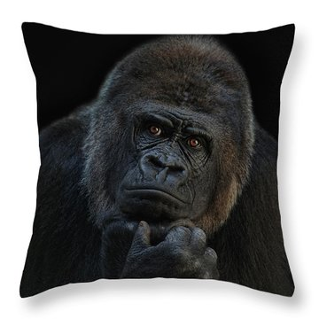 You Ain T Seen Nothing Yet Throw Pillow by Joachim G Pinkawa