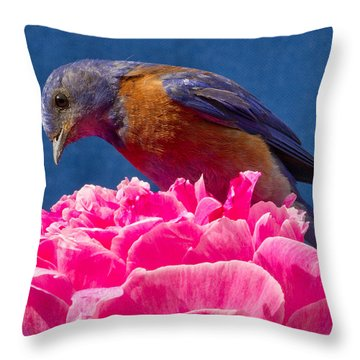 You Move And I Have My Lunch Throw Pillow by Jean Noren