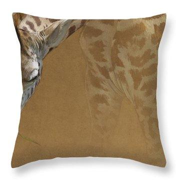 Young Giraffe Throw Pillow by Aaron Blaise