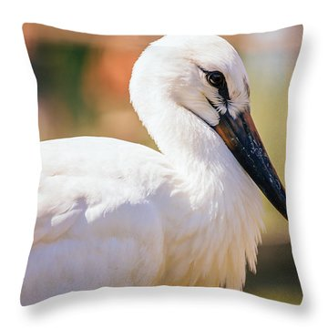 Young Stork Portrait Throw Pillow by Pati Photography