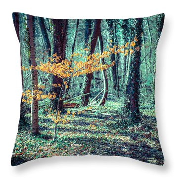 Youngster Throw Pillow by Hannes Cmarits