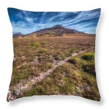 Yr Eifl Trail Throw Pillow by Adrian Evans