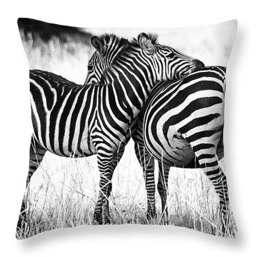 Zebra Love Throw Pillow by Adam Romanowicz